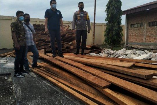 Tiga pembalak liar diringkus Polres Bengkalis