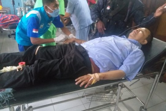 Waket TGPF: Bambang Purwoko peneliti dari UGM