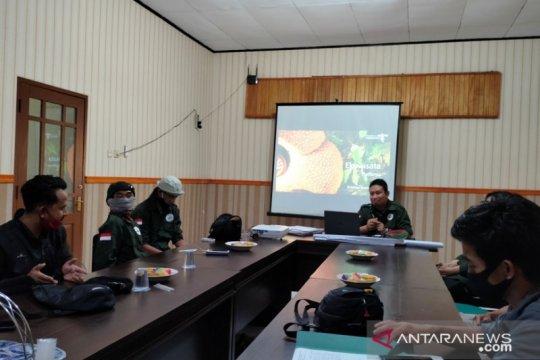 """Rejang Lebong salah satu habitat """"Rafflesia arnoldii"""""""