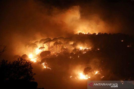 Kebakaran hutan terjadi di Libanon