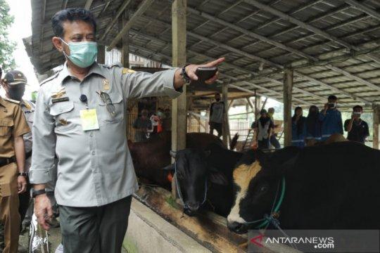 Kunjungi Sukabumi, Mentan pastikan persediaan nutrisi aman saat COVID