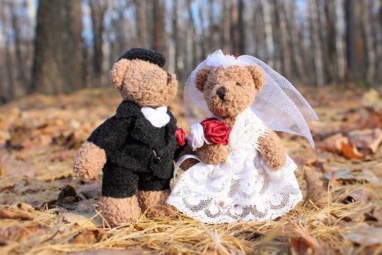Sekarang saat yang tepat untuk menikah bebas ruwet