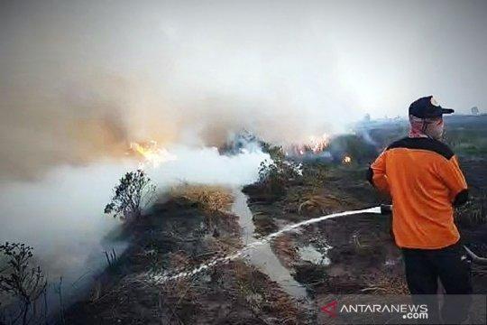 Karhutla di Kabupaten Kapuas Kalteng terjadi di tiga desa