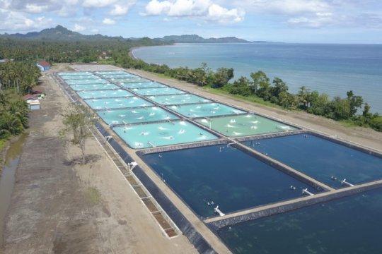 Pemerintah perlu pastikan tata cara budidaya ikan ramah lingkungan