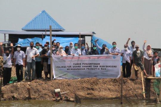 KKP minta pembudidaya ikan gunakan produk hasil riset