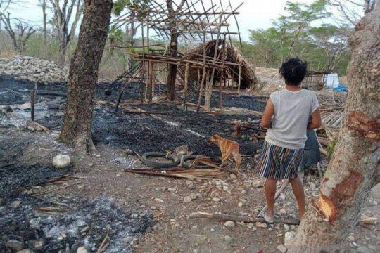Kasus di Besipae dinilai ketidakmampuan Pemprov NTT selesaikan konflik