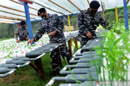 LIPI: Tingkatkan ketahanan pangan di masa pandemi COVID-19