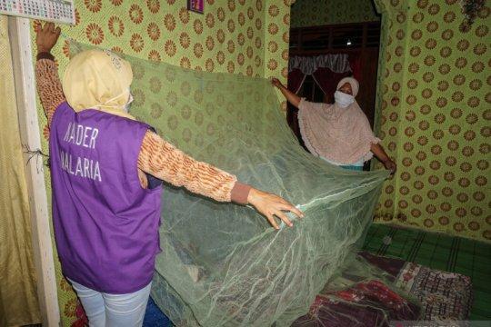 Pakar IPB: Waspadai nyamuk pembunuh nomor satu dunia