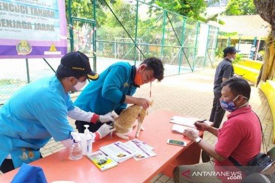 Jakpus targetkan beri vaksin rabies ke 4800 hewan hingga akhir 2020
