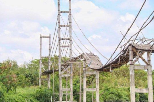 KKP: Pulihkan ekonomi, 112.500 bibit mangrove ditanam di Kalbar
