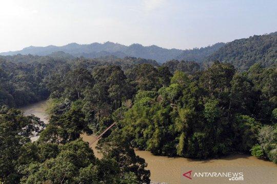 AMAN usulkan penetapan 13.964 ha hutan adat di Bengkulu