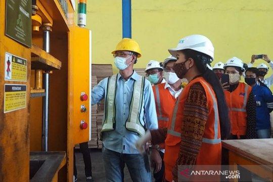 Anggota DPR apresiasi pemanfaatan EBT untuk bahan bakar PLTU di Flores