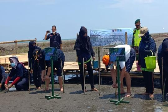Tiga menteri tanam mangrove di Brebes atasi abrasi dan rob