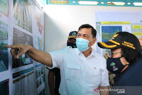 Luhut mau lobi Eropa-UEA bantu program penanaman mangrove