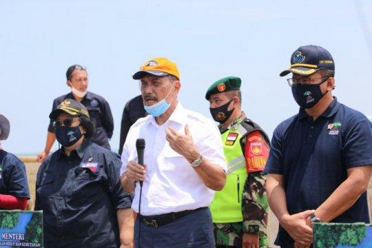 Selaraskan kelestarian dan pemulihan ekonomi, KLHK inisiasi padat karya penanaman mangrove