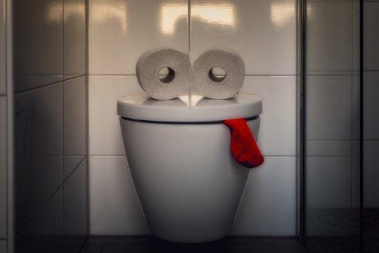 Jangan lama-lama BAB di WC duduk kalau tak mau kena wasir