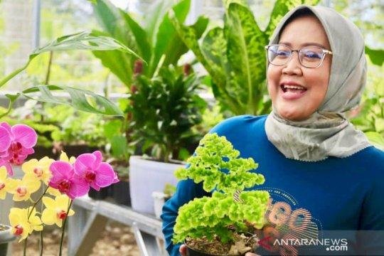 Omzet tanaman hias Kabupaten Bogor tembus Rp300 juta per hari