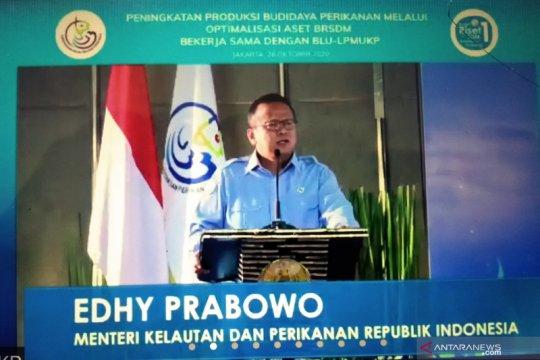 Tingkatkan produksi budidaya, Menteri Edhy dorong pemanfaatan lahan