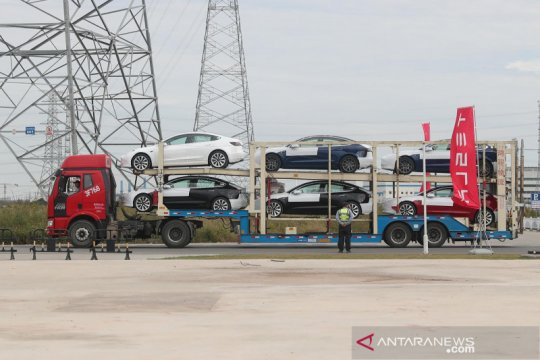 Kejutan awal tahun Tesla, model baru dihargai Rp700 jutaan di China