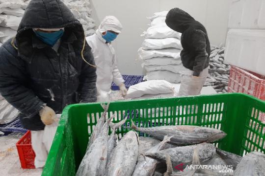 Kemendag bersama KKP lepas ekspor tuna ke Korsel