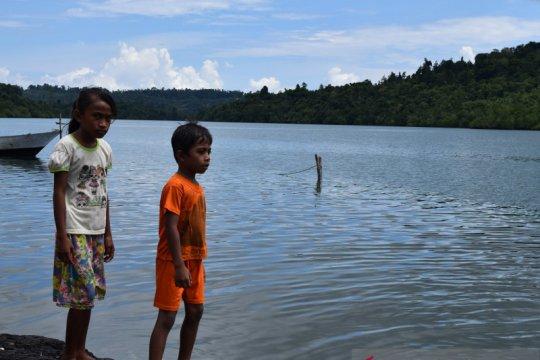 Jasa Gane Dalam untuk Indonesia