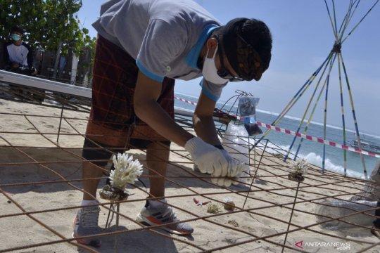 Luhut minta program PEN untuk restorasi terumbu karang terus dikawal