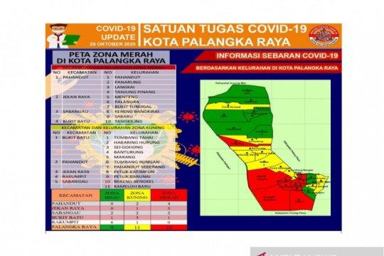 11 Kelurahan di Palangka Raya zona kuning penyebaran COVID-19