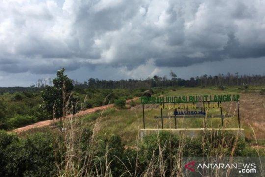 Menelisik polemik sawah di Bunda Tanah Melayu (I)