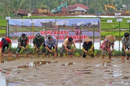 Serikat Petani deklarasikan Kawasan Daulat Pangan di empat provinsi