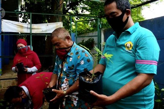 Dukung ketahanan pangan, Disdik Tangerang panen hasil pemanfaatan lahan sekolah