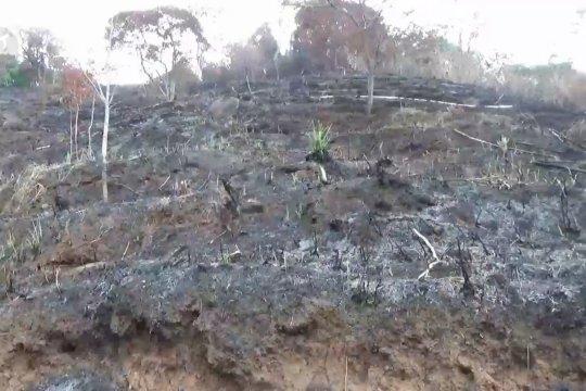 Pembukaan lahan di lereng Wilis memicu bencana alam