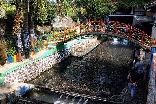 Bersih dan dipenuhi ikan, sungai Watergong Klaten menjadi tempat wisata