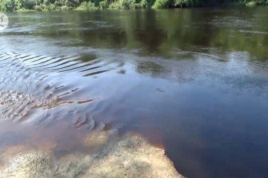 Bengawan solo tercemar limbah