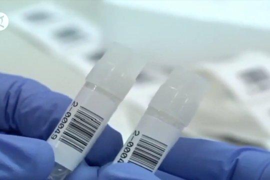 Tersedia vaksin untuk 9,1 juta orang di akhir 2020