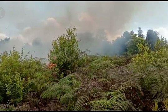 3 hektare lahan di Danau Rangas ludes terbakar