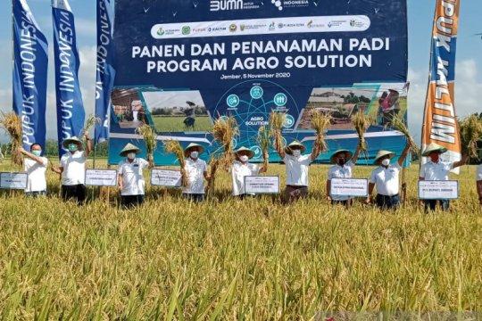 Dirut Pupuk Indonesia: Agro Solution bakal dongkrak produksi pertanian