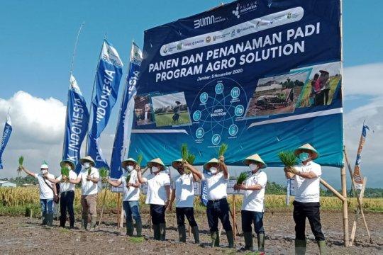 Pupuk Kaltim kembangkan Agro Solution pada 15 kecamatan di Jember
