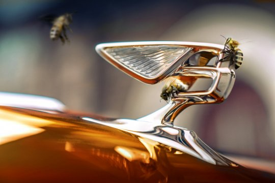 """Semua mobil Bentley """"full electric"""" pada 2030"""