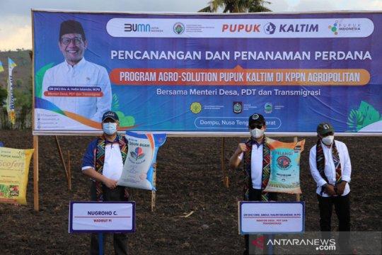 Pupuk Indonesia dongkrak produktivitas jagung lewat Agro Solution