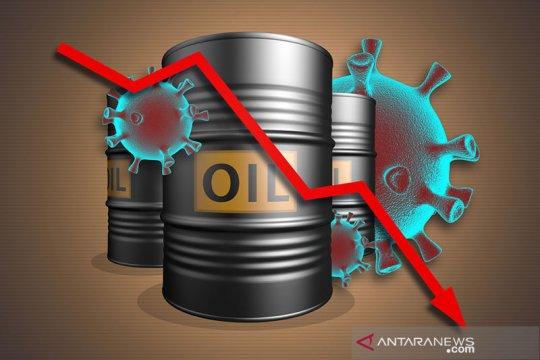 Harga minyak jatuh tertekan lonjakan virus corona, stok AS naik