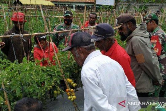 TNI diminta motivasi petani di Jayawijaya-Papua olah lahan kosong