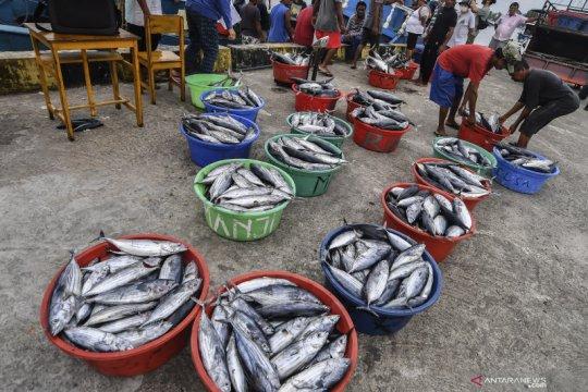 Ekspor perikanan bermasalah, KKP perlu yakinkan pasar mancanegara