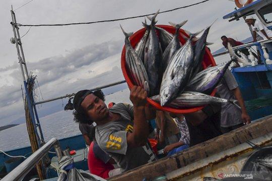 Tingkatkan ekspor ikan, Kadin harap subsidi listrik di Indonesia timur