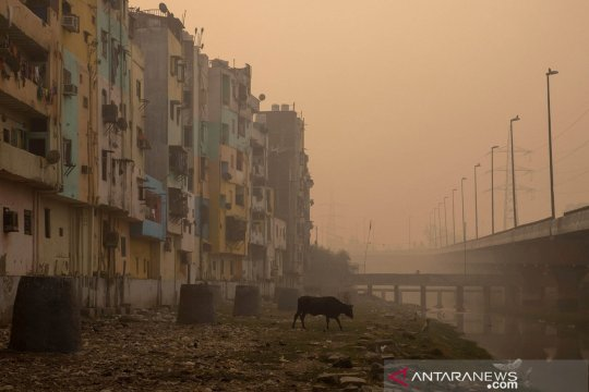 Kualitas udara New Delhi berada di level terburuk tahun ini