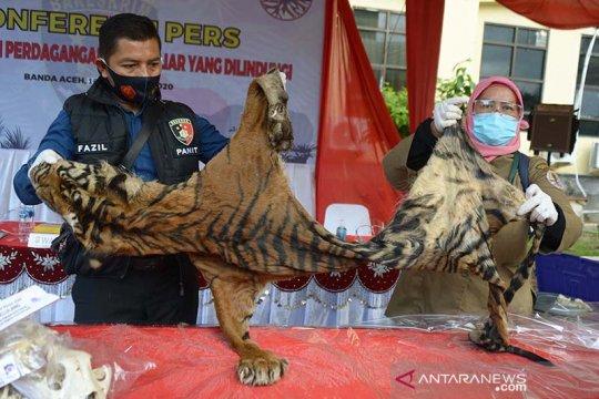 Perdagangan satwa Rp6,3 miliar digagalkan Tim gabungan Polda Aceh