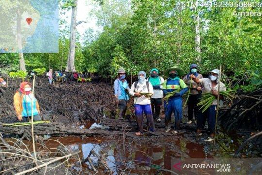 Luhut tegaskan program rehabilitasi mangrove terukur dan terintegrasi