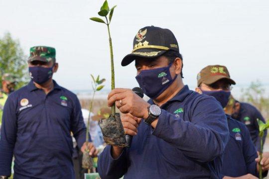 629 warga pesisir Sumsel ikut program padat karya tanam mangrove