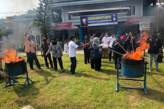 BNNP Sumatera Barat musnahkan 53,1 kilogram ganja barang bukti