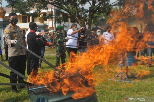 Pemusnahan ganja BNNP Sumbar