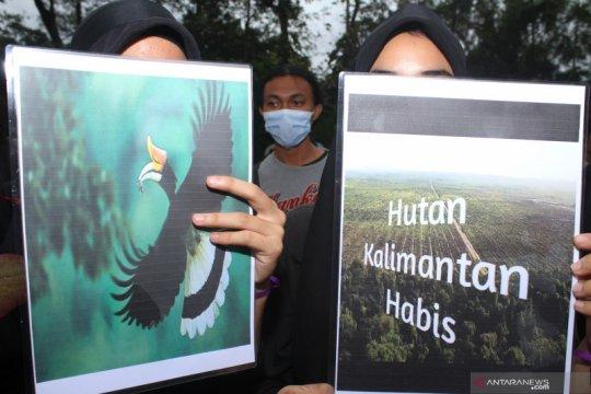 Pemprov Kalbar berupaya tekan lajunya deforestasi dan degradasi hutan